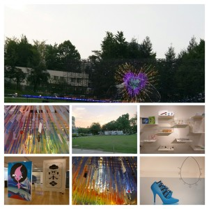 IMG_20150704_170753-COLLAGE