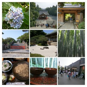 IMG_20150802_131752-COLLAGE