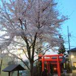 外国人観光客を案内したい神楽坂 観光スポット~体験・買い物・周辺観光など~
